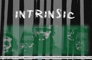 intrinsic 2